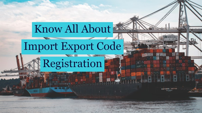 What is  an Import Export Code?